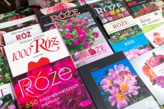 Biblioteczka Różana